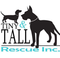 Tiny n Tall rescue