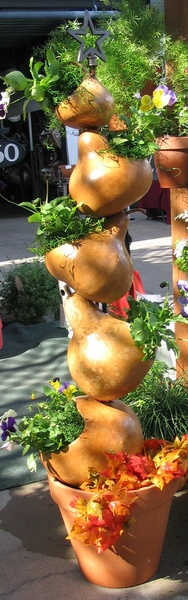 Gourds on a Large Plant Stand with Pansies - To Order the Plant Stand: Click on ''Highlights'' then ''Plant Stands''