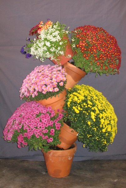 Fall Mums-Large Plant Stand - To Order the Plant Stand: Click on ''Highlights'' then ''Plant Stands''
