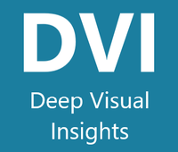 Deep Visual Insights (DVI)