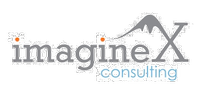 ImagineX Consulting