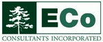 E Co Consultants, Inc.