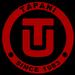 Tapani, Inc.