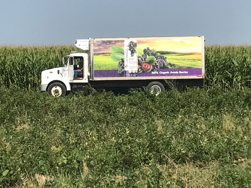 Nebraska Aronia Processors Aronia truck in the feild