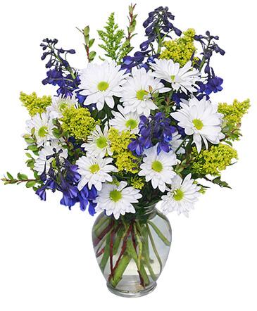 Gallery Image flower2.jpg