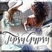 Tipsy Gypsy Boutique