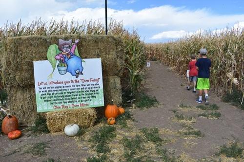 Gallery Image Glen-Rays-Corn-Maze-and-Pumpkin-Patch-2-600x400.jpg