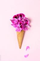 Sweet Violet Desserts