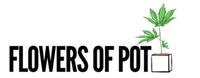 Flowers of Pot
