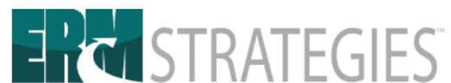 ERM Strategies, LLC