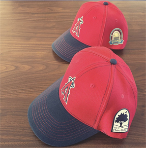 Picture of Angels Hats