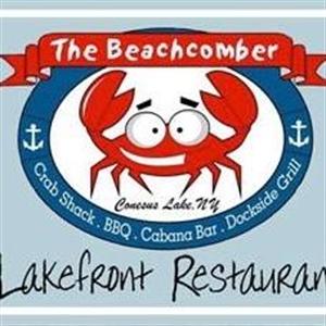 Picture of Beachcomber of Conesus
