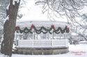 Picture of Macomb Holiday Gazebo Postcard