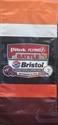 Picture of Battle at Bristol Commemorative Banner