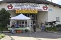 Picture of Apple Blossom Festival Sponsorship Opportunities - 4510