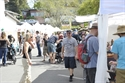 Picture of Arts-Crafts, Non-Profit & Commercial Vendor Booths - 4530