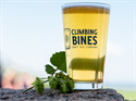 Picture of Climbing Bines Craft Ale Company | Gift Certificate