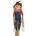 Picture for category Scarecrow Hunt