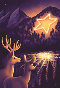 Picture of Boulder Chamber 2020 Boulder Holiday Star Cards