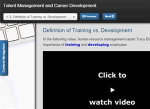 picture of talent management and career development