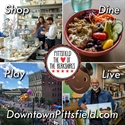 Picture of Support Downtown Pittsfield, Inc.