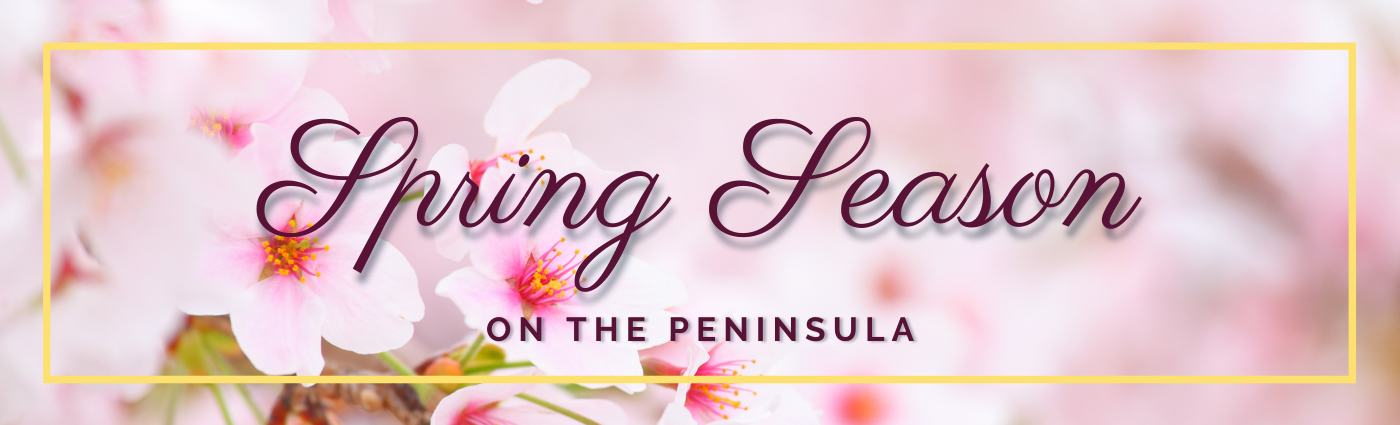 2021_Spring_Page_Banner.png