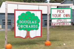 Douglas-Orchards-w300.jpg