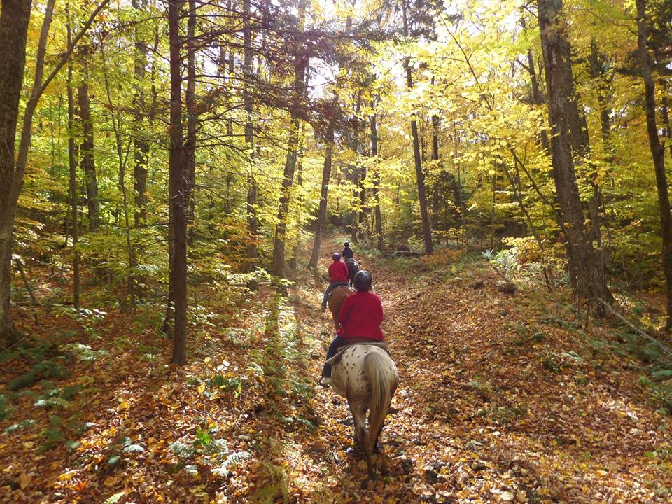 Horseback riding at Mountain Top Inn, Chittenden, Vermont