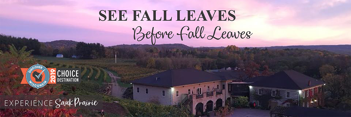 See fall leaves before fall leaves