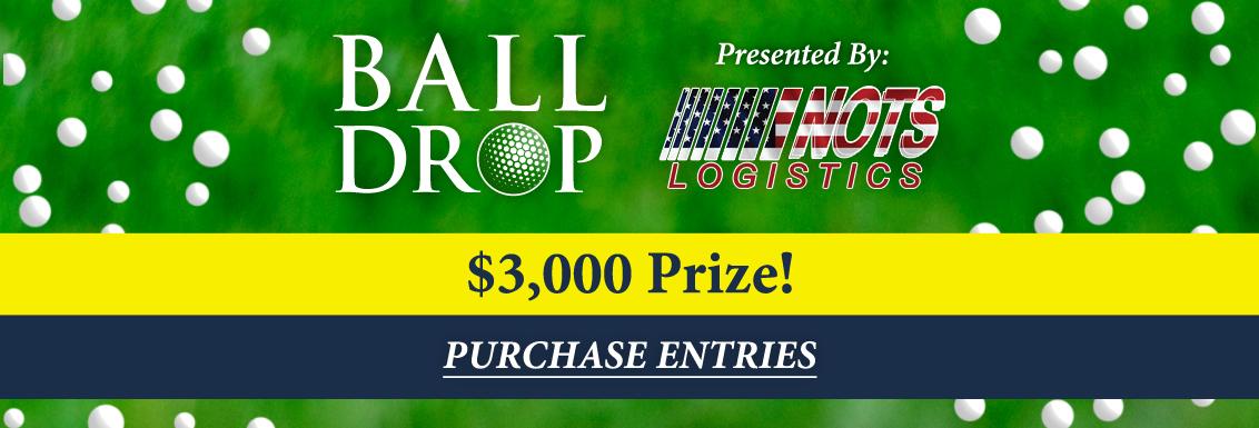 2021-Ball-Drop-Website-Banner.png
