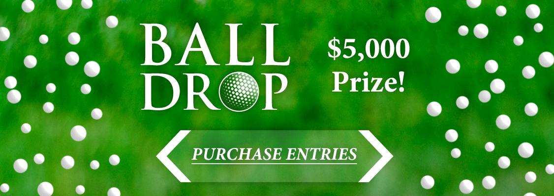 Ball-Drop-Website-Banner.png