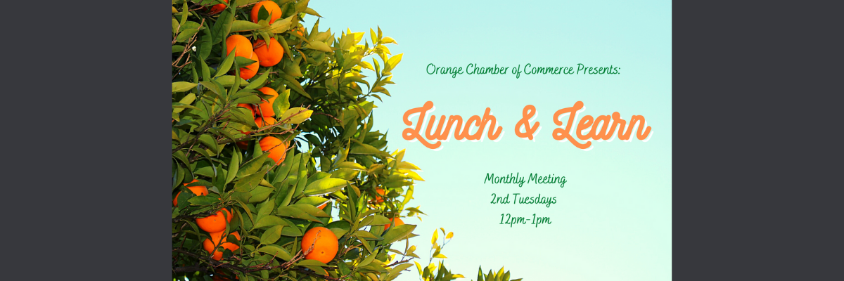 Lunch-and-Learn-Website-Banner(1).png
