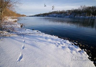 winterriver2.jpg