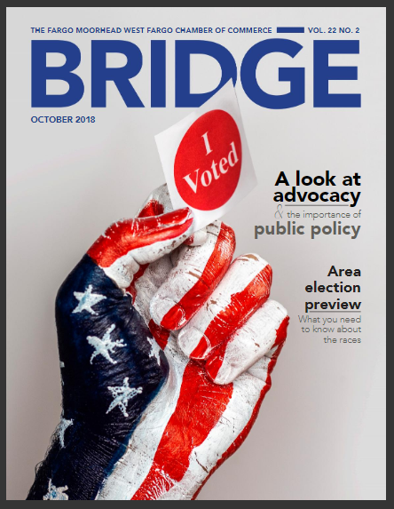 The Bridge, cover
