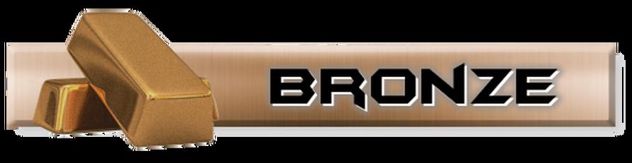 bronze_1.png