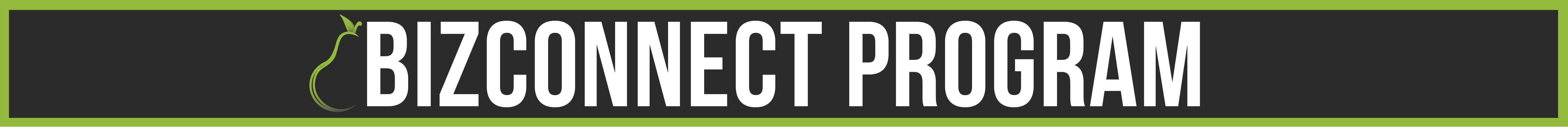 BizConnect.png