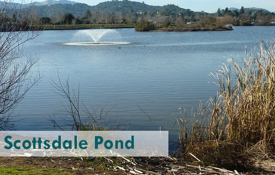 Scottsdale_Pond4_PARK.png