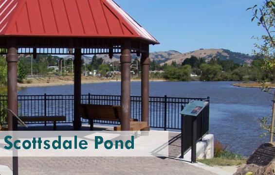 Scottsdale_PondPARK.png