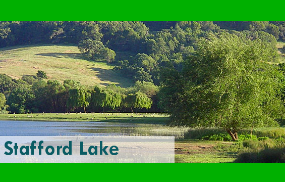 StaffordLake1_PARK.png