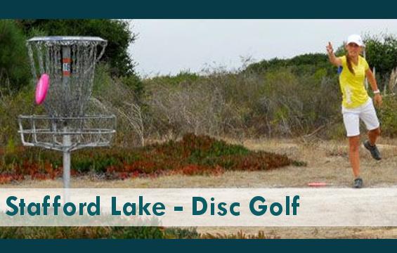 Disk_Golf_AF.png