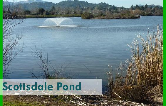 Scottsdale_Pond3_PARK.png