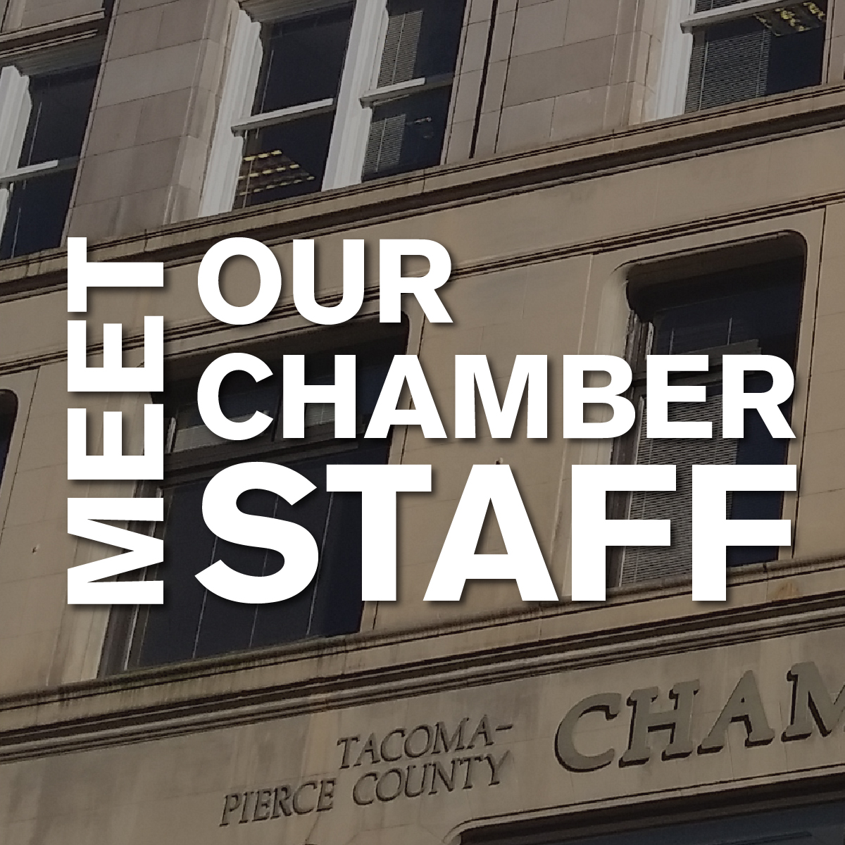 Meet Our Chamber Staff