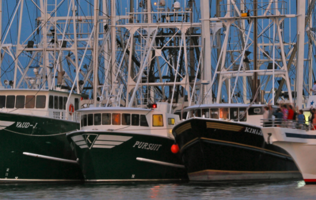 fishingfleet-625.jpg