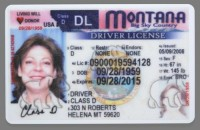 MT Drivers License.jpg
