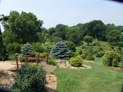 Garden Conifers at Bickelhaupt Arboretum