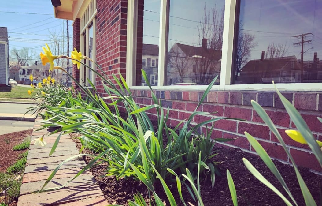 Spring at the Dover Chamber