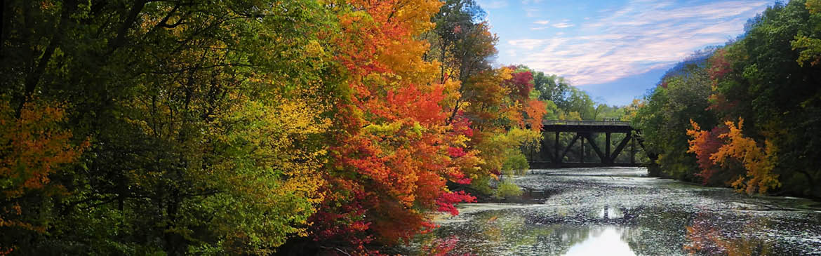 Website-Banner-(the-fall-foliage)-X5.jpg
