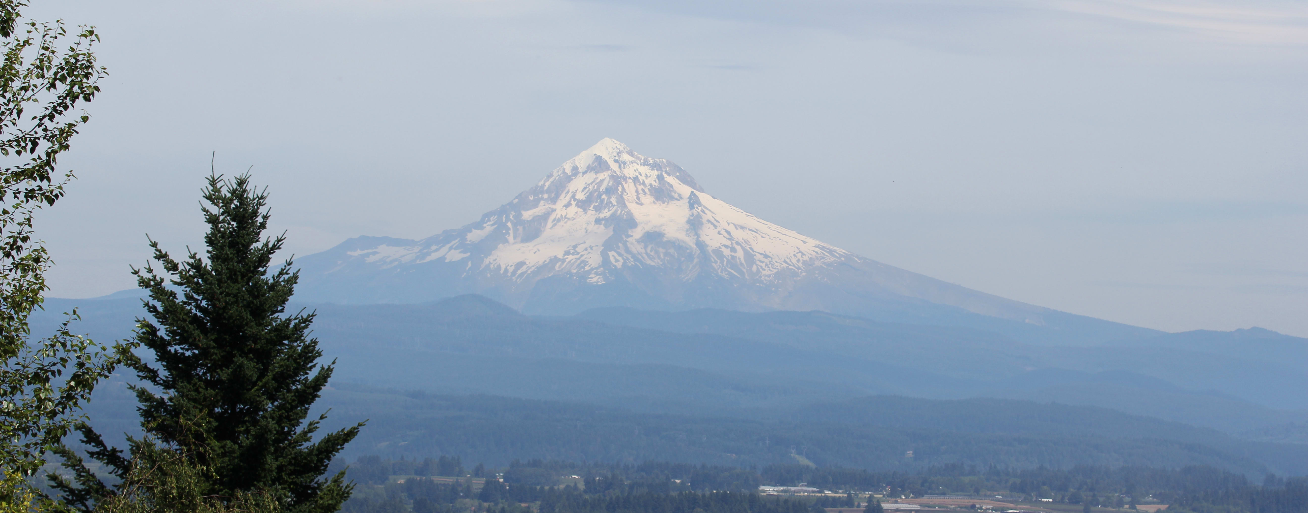 Mount-Hood-view-from-Hogan-Butte-w5184.jpg
