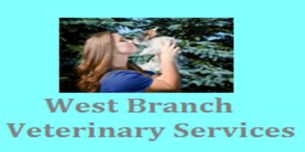 west-branch-veterinary-services-logo-right-w600.png