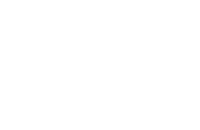 Business Without Boundaries Logo